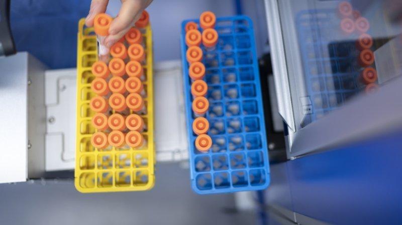 Coronavirus: la Suisse compte 1792 nouveaux cas, 8 décès et 18 hospitalisations en 24h