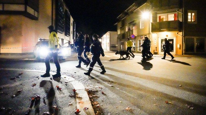 Norvège: un homme armé d'un arc fait 5 morts et 2 blessés