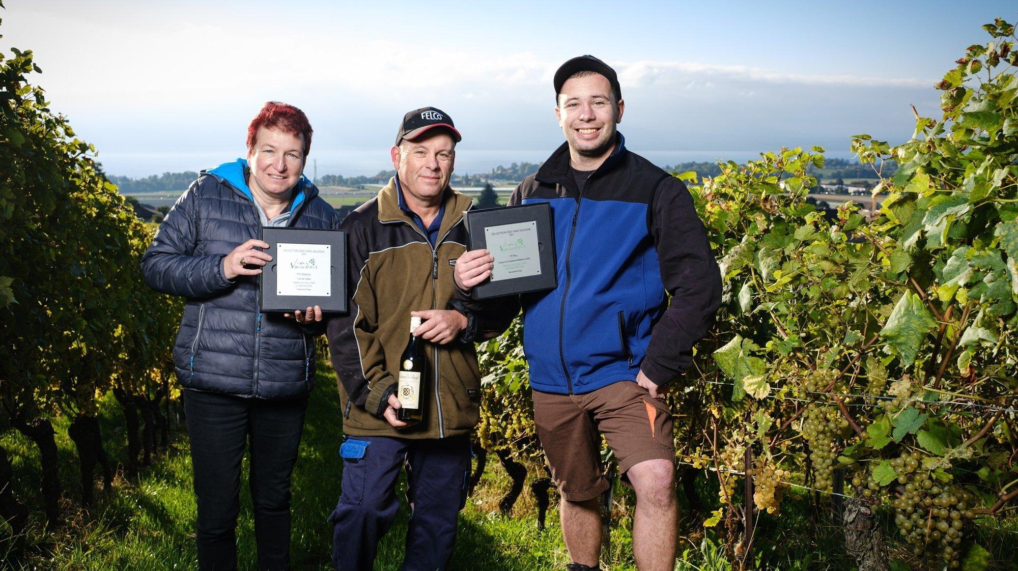 Gilly: une vendange comme les autres pour le «meilleur vin vaudois»