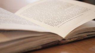 Genève: un Salon du livre décentralisé et intimiste a séduit le public