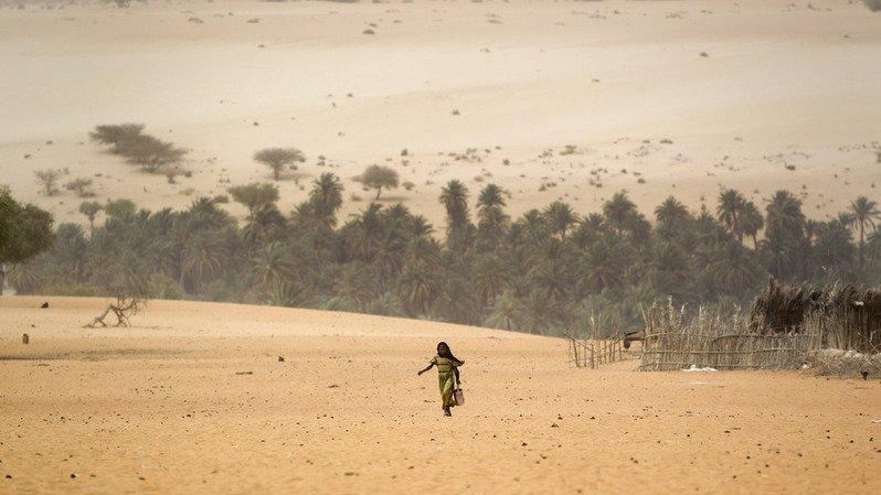 Mauritanie: une violente tempête de sable et de fortes pluies font 15 morts