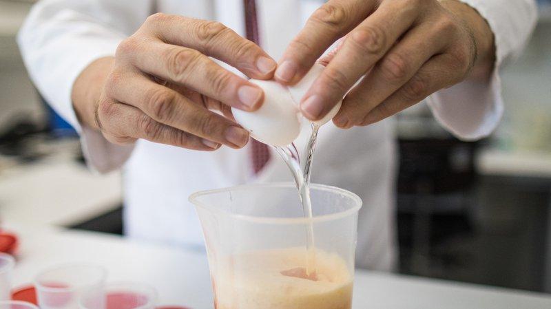 Oeufs contaminés: pas de traces de l'insecticide fipronil dans les oeufs suisses