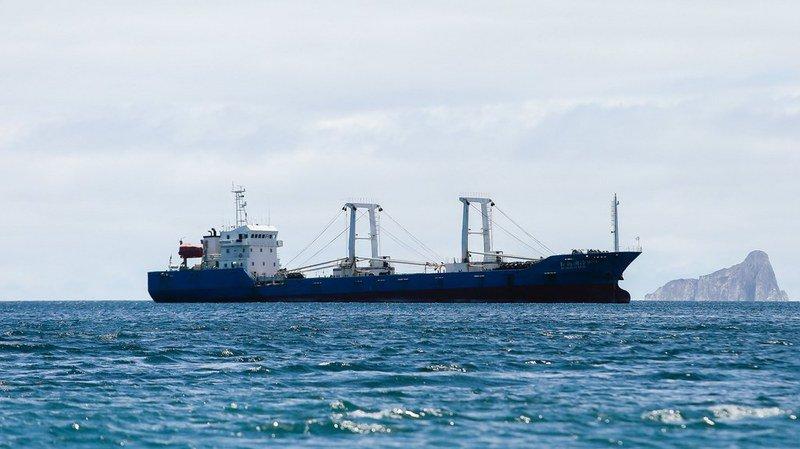 Galapagos: un navire chinois transportant illégalement plus de 6600 requins arrêté