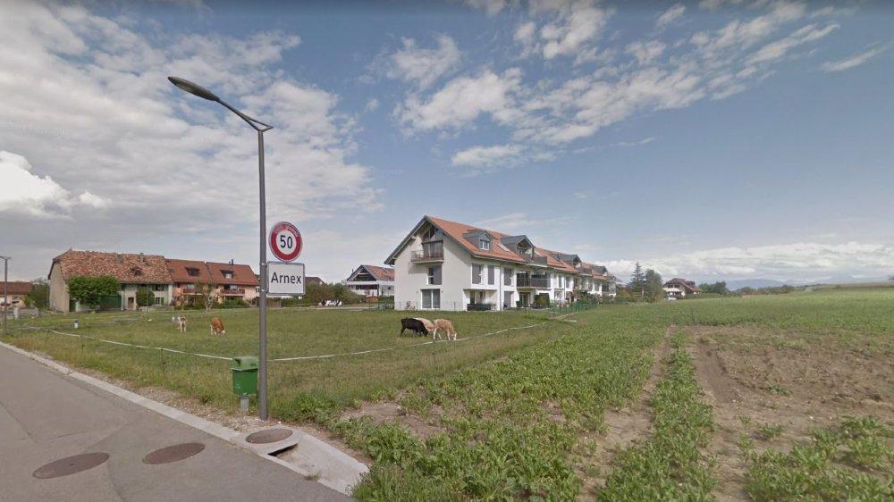 Aux quatre immeubles déjà bâtis devraient enfin s'ajouter deux bâtiments sur les parcelles appartenant à la commune.