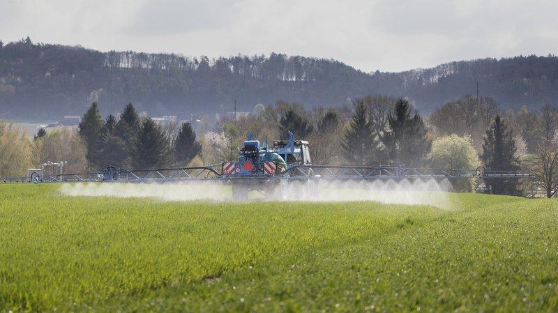 Environnement: les paysans devront utiliser moins de pesticides dans les cultures