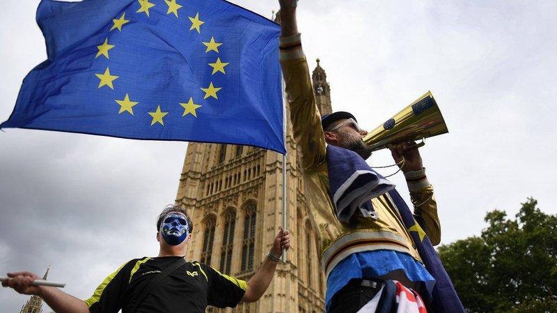 Pour les manifestants le Brexit n'aura que des conséquences négatives.