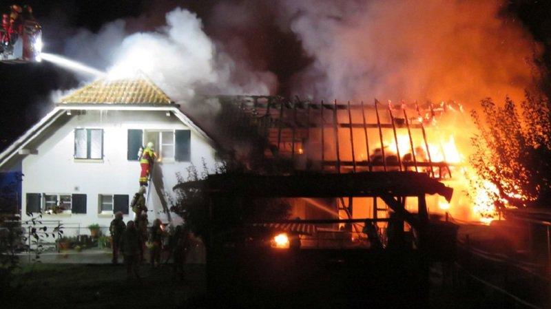 Argovie: des lapins et des oiseaux périssent dans l'incendie d'une étable à Fahrwangen