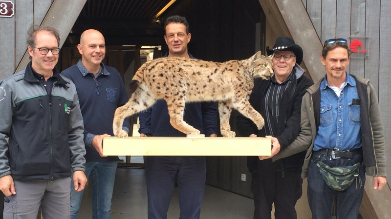 Le lynx Toundra de retour au zoo de la Garenne