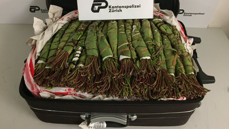 Aéroport de Zurich: plus de 1380 kg de drogue saisis en 3 mois