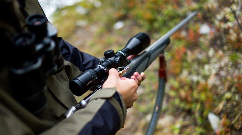 """Un chasseur a tué une sexagénaire qui se trouvait dans son jardin, croyant """"tirer sur un cerf"""" à travers une épaisse haie. (illustration)"""