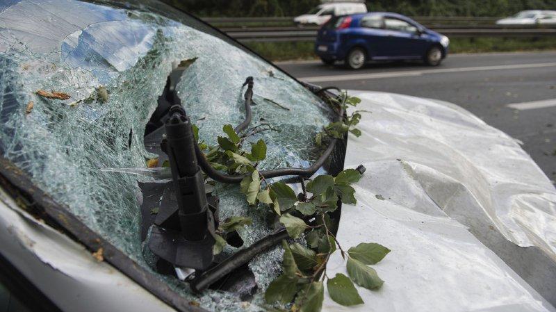 Six automobilistes ont été tués par des chutes d'arbres ou de branches dans une tempête qui balaie le nord et l'est de l'Allemagne.