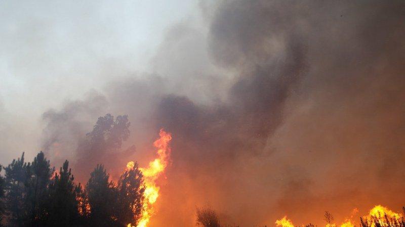 Portugal: victime de 300 incendies en une journée, un record