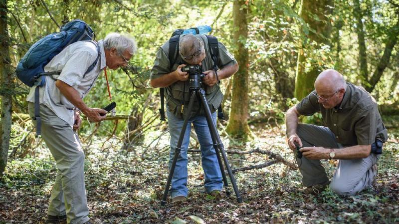 Au Bois de Chêne, ils veillent sur les champignons