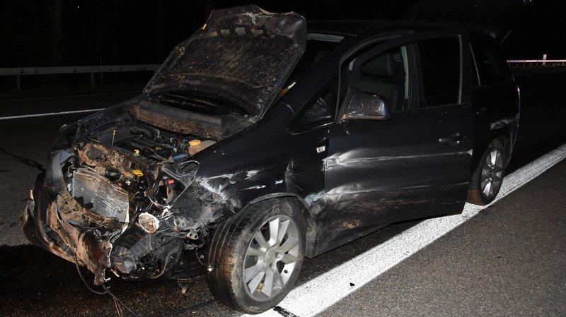 Huit sangliers meurent sur l'A1, percutés par des véhicules