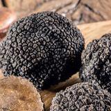 Marché aux truffes Morat