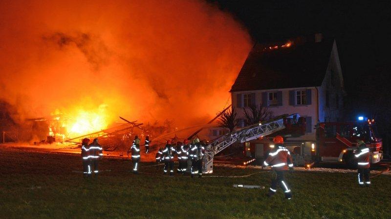 Thurgovie: 39 animaux périssent dans l'incendie de leur pension à Boltshausen