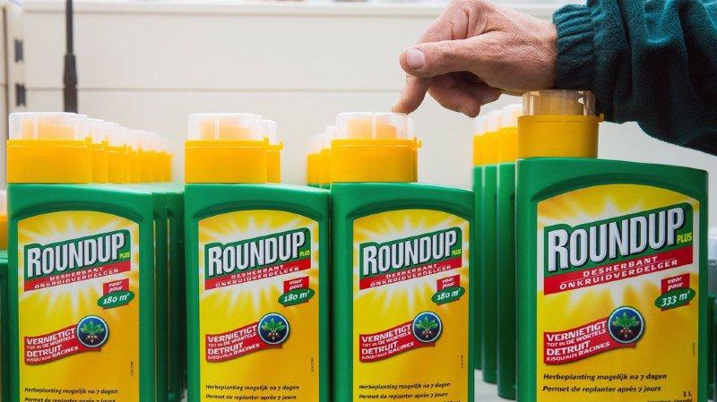 Santé: les résidus de glyphosate sans danger pour les Suisses, selon le Conseil fédéral