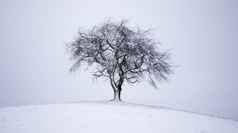 Météo: un froid polaire débarque sur la Suisse dès jeudi, le week-end sera glacial