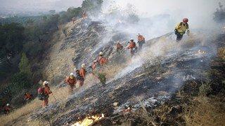Incendies en Californie: la Maison-Blanche décrète l'état d'urgence