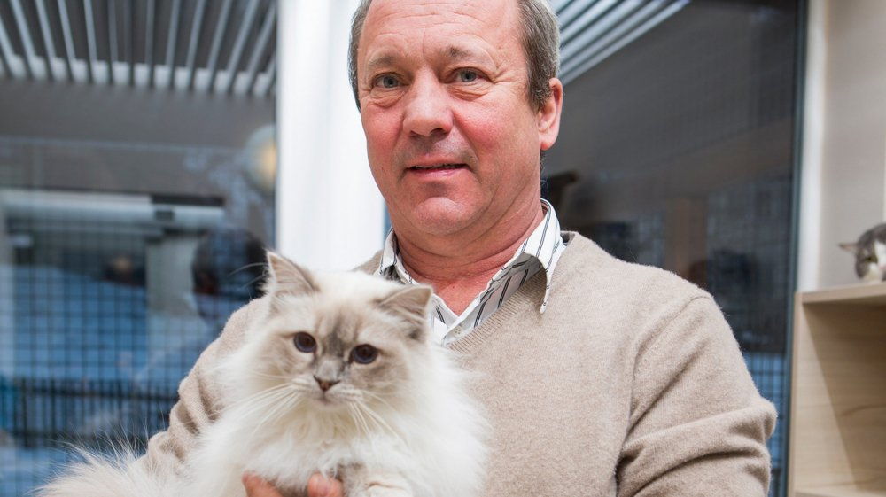 Alain Zwygart avec un chat actuellement en pension chez lui.