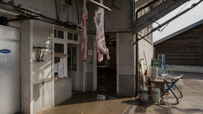 Suite à des vidéos choc, l'abattoir de Rolle a été fermé provisoirement