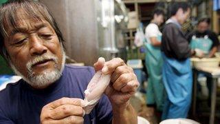 Japon: un supermarché a vendu par erreur cinq poissons sans en avoir extrait leur foie qui est toxique.