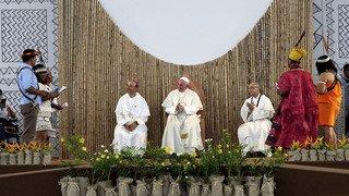 Environnement: le pape François appelle à protéger l'Amazonie