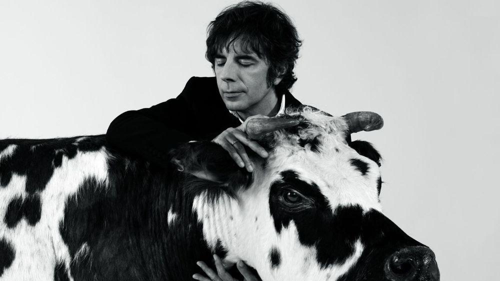 Le chanteur parisien Thomas Fersen poursuit son bestiaire avec «Un coup de queue de vache».