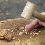 Fête à la noix