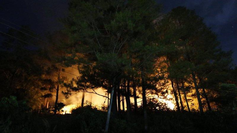 Ces incendies font craindre des émanations de fumée qui polluent chaque année d'autres pays de la région.