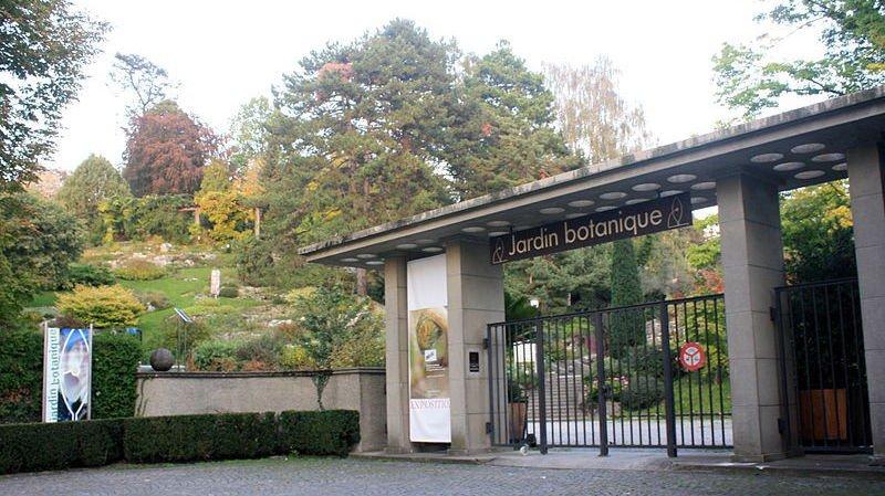 Lausanne une nouvelle serre pour le jardin botanique for Boutique jardin botanique