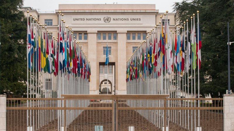 Le vrai et le faux sur les fonctionnaires internationaux