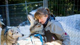 A Saint-Cergue, elle vit au milieu des huskys