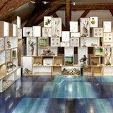 PâKOMUZé : Collection printemps-été, Musée Léman