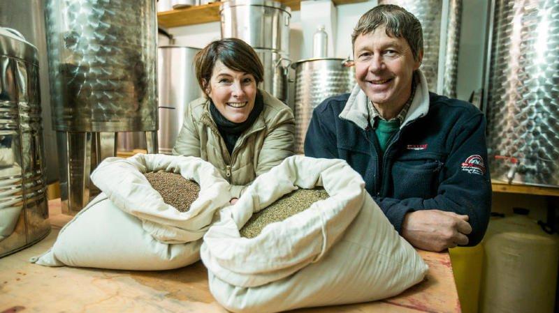 Des graines de Changins stockées au Svalbard