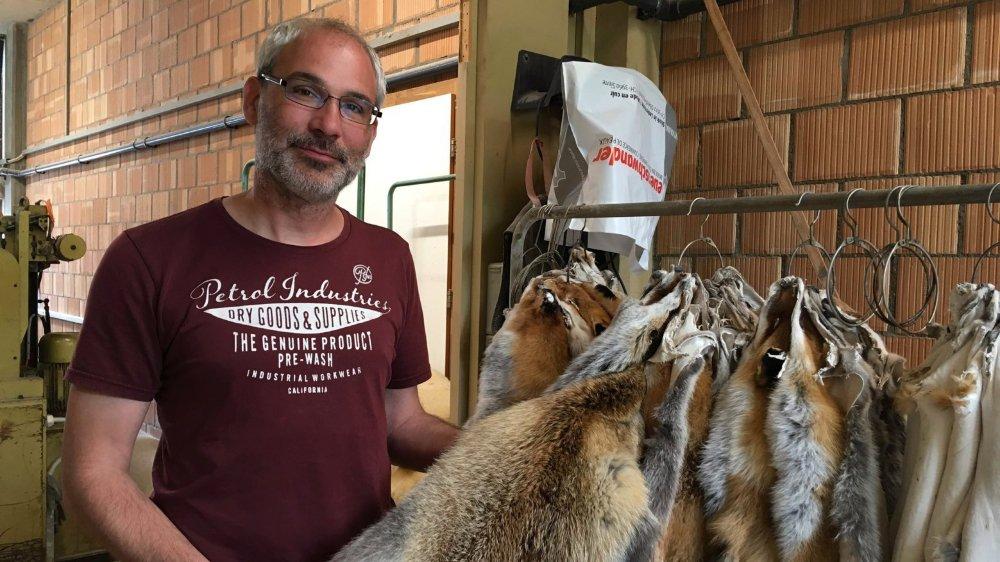 La tannerie des frères Neuenschwander est l'une des dernières à préparer encore des pelleteries de renards.