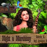 Wild Night à Marchissy