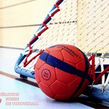 Tournoi du Nyon Tchoukball Club