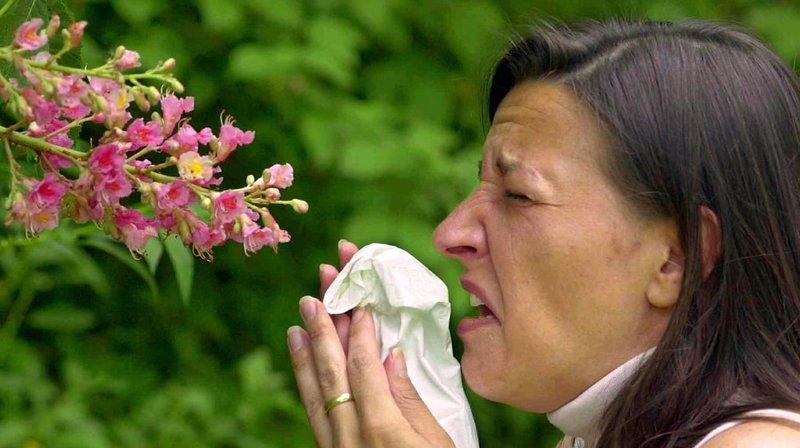 Les personnes souffrant d'allergies pourront se renseigner en temps réel. Les premiers essais sont très prometteurs (illustration).
