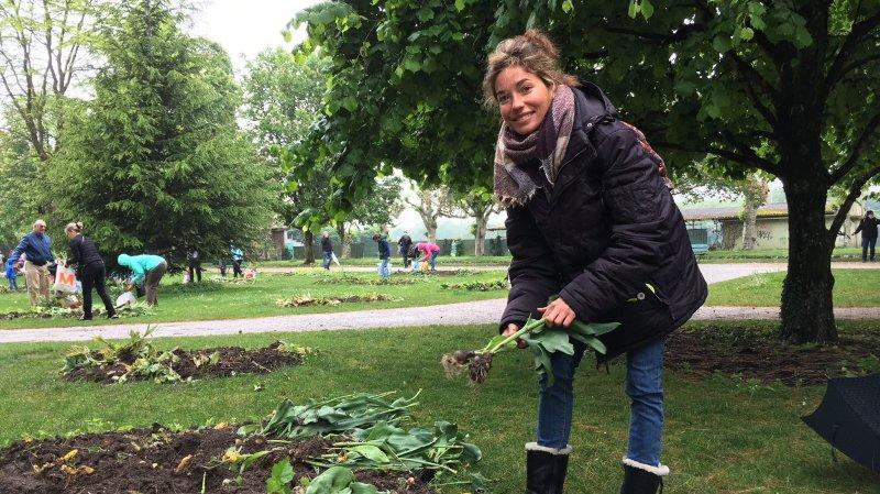 Stéphanie Solliard avait soigneusement préparé le ramassage des bulbes grâce à un plan rédigé auparavant.