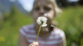 Une application pour smartphones dédiée aux allergies aux pollens en Suisse