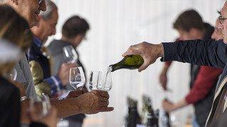 Caves ouvertes: 700 caves pour découvrir les vins suisses pendant le mois de mai