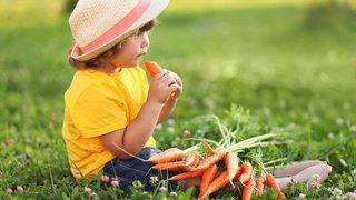 Enfant végétarien, une bonne idée?