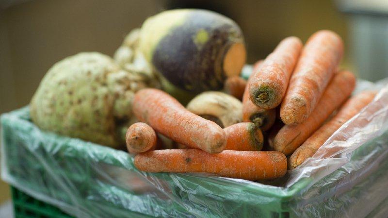 Les légumes vont se faire de plus en plus rares à cause du réchauffement climatique.