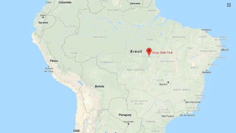 Brésil: enterrée pendant sept heures, une nouveau-née d'une tribu indienne survit