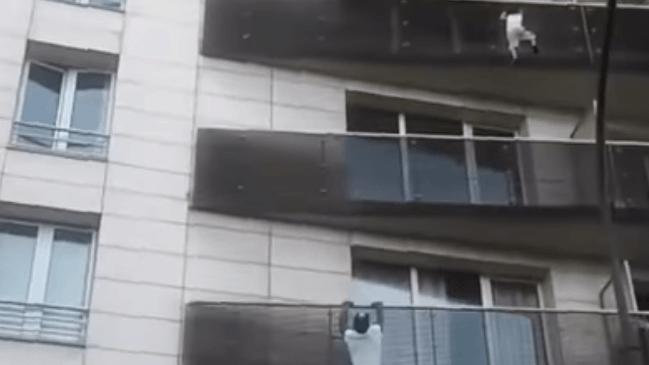 Paris: un jeune Malien escalade un immeuble pour sauver un enfant