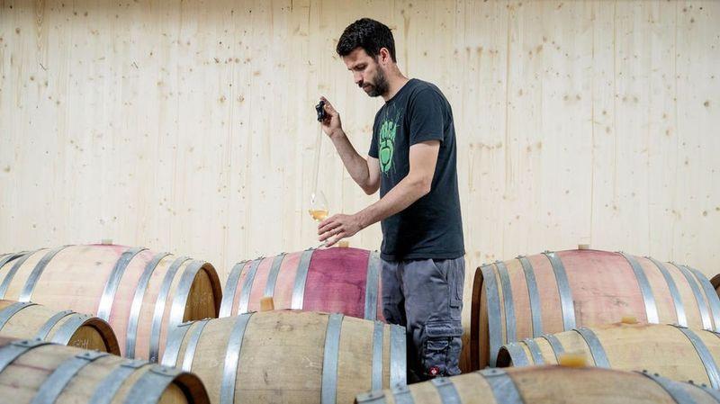 Sulfites dans le vin: la vérité sur quatre idées reçues