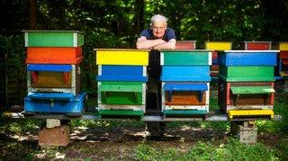 Bière: fondée il y a un siècle, la société d'apiculture a bénéficié d'une petite touche divine