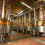 Visite guidée de la Distillerie Morand