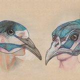"""Théâtre : """"La conférence des oiseaux"""""""